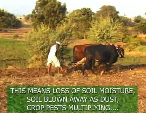 loss of soil moisture