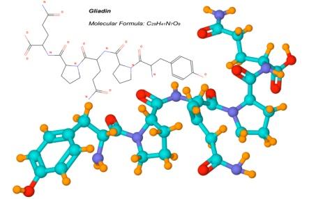 Gluten Molecule