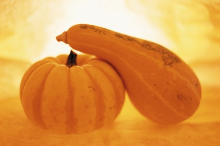 KABOCHA squash and pumpkin